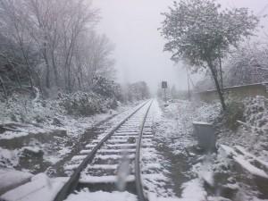 Debora-Poodesu__Ferrovia-innevata_g